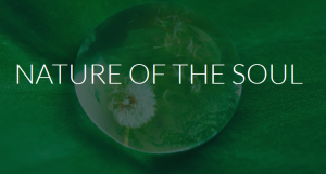 nature-of-the-soul logo